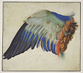Hans Hoffmann Blaurackenflügel 1513.jpg