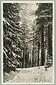 Harjutie, Finlandian risteys, 1920s PK0095.jpg