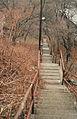 Harpster st steps (4371769340).jpg