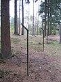 Hekken (31094620026).jpg