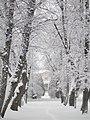 Herttoniemen kartano tammikuja talvi Helsinki.jpg