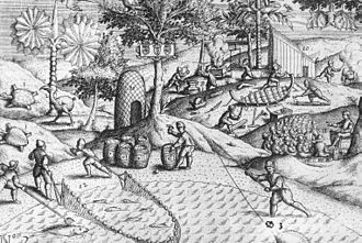 "Jacob Corneliszoon van Neck - Illustration from van Neck's ""Het Tweede Boeck"" showing Dutch activities on the shore of Mauritius, as well as the first published depiction of a dodo bird, on the left"