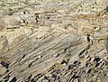 High angle aeolian cross beds.jpg