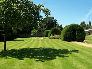 Highclere Castle - Lawn stripes, topiary