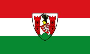 Spremberg - Image: Hissflagge der Stadt Spremberg