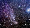 Hlava čarodejnice, mlhovina IC 2118.jpg