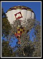 Hot Air Balloon over Canberra-3 (5659710699).jpg