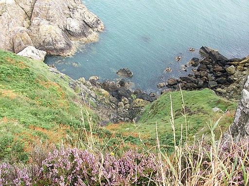 Howth Head cliffs