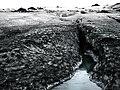 Iceland - Sólheimajökull - 2008 (4889969075).jpg