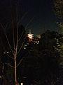 Illuminated Koyasunoto Tower of Kiyomizudera Temple.jpg