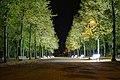 Illuminierte Parkbänke im Hofgarten Düsseldorf.jpg
