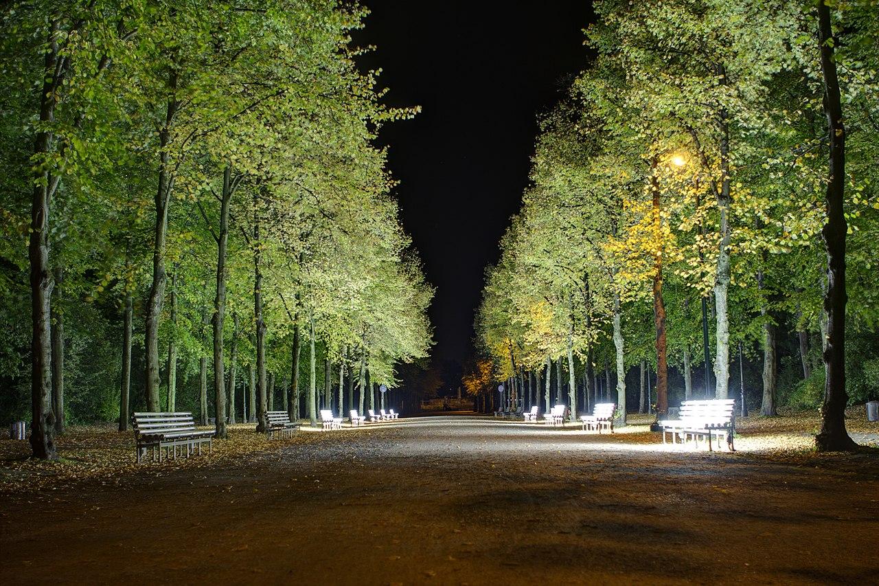 A walkway in Hofgarten at Night