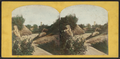 In the Ramble, Bell Tower in the distance, from Robert N. Dennis collection of stereoscopic views.png