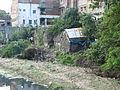 India - Sights & Culture - 003 - poverty juxtaposed in urban life (342048424).jpg