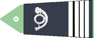 Commandant (rank) - Image: Ingénieur de l'AE 7 10e échelon