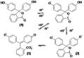 Ionizačné reakcie fenolftaleínu.png