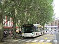 Irisbus Agora S n°3020 STAC Elephants.jpg