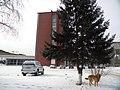 Irkutsk. Akademgorodok. February 2013 - panoramio (165).jpg