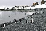 Isla de la Media Luna 1.jpg