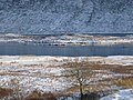 Island in Loch Cluanie - geograph.org.uk - 130956.jpg