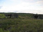 Iwo Jima - Bunkers