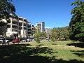 James Warner Park, Brisbane 06.2014 01.JPG