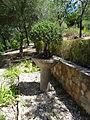 Jardín Botánico El Castillejo MIN-DSC09504.JPG