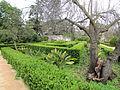 Jardim Botanico da Ajuda (14005600191).jpg