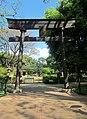 Jardim Japonês Jani Pereira (1).jpg
