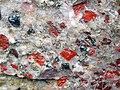 Jasper-quartz pebble conglomerate (Lorrain Formation, Paleoproterozoic, ~2.3 Ga; Ottertail Lake Northeast roadcut, near Bruce Mines, Ontario, Canada) 19 (46793259925).jpg