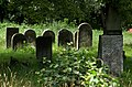 Jewish cemetery Pruszkow IMGP6787.jpg