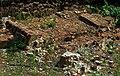Jewish cemetery Radosc 2.jpg
