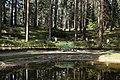 Jonkoping skogskyrkogarden.jpg