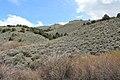 Jumbo Grade Trail - panoramio (1).jpg