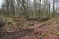 Junction in Black Wood - geograph.org.uk - 1772419.jpg