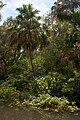 Kakadu National Park-22 (8308707763).jpg