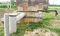 Kang di Motor, Rolu Majra, Rupnagar, Punjab, 140102, India - panoramio (1).jpg