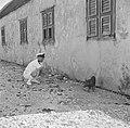 Kapitein Gorter van Hr Ms van Speijk op Bonaire met een varkentje, Bestanddeelnr 252-8505.jpg