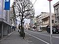 Kiryu - panoramio - kcomiida (8).jpg