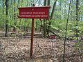 Klasztorne Modrzewie reserve.jpg