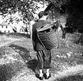 Koš za polhe s samojstrami, Male Lipljene 1948.jpg