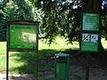 Kostelecký zámecký park (29).JPG