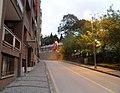 Kozluk hill of palace-sarayyokuşu k'yg* - panoramio.jpg