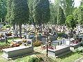 Krakow-Cmentarz Kobierzyn-Maki Czerwone groby.jpg