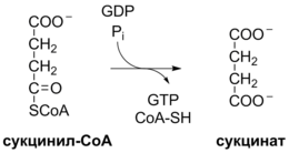 Krebs Cycle Reaction 7 ru.png