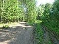 Kungursky District, Perm Krai, Russia - panoramio (139).jpg