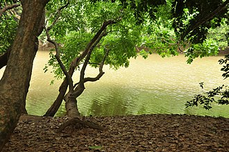 Kuruvadweep - Image: Kuruva islands wayanad