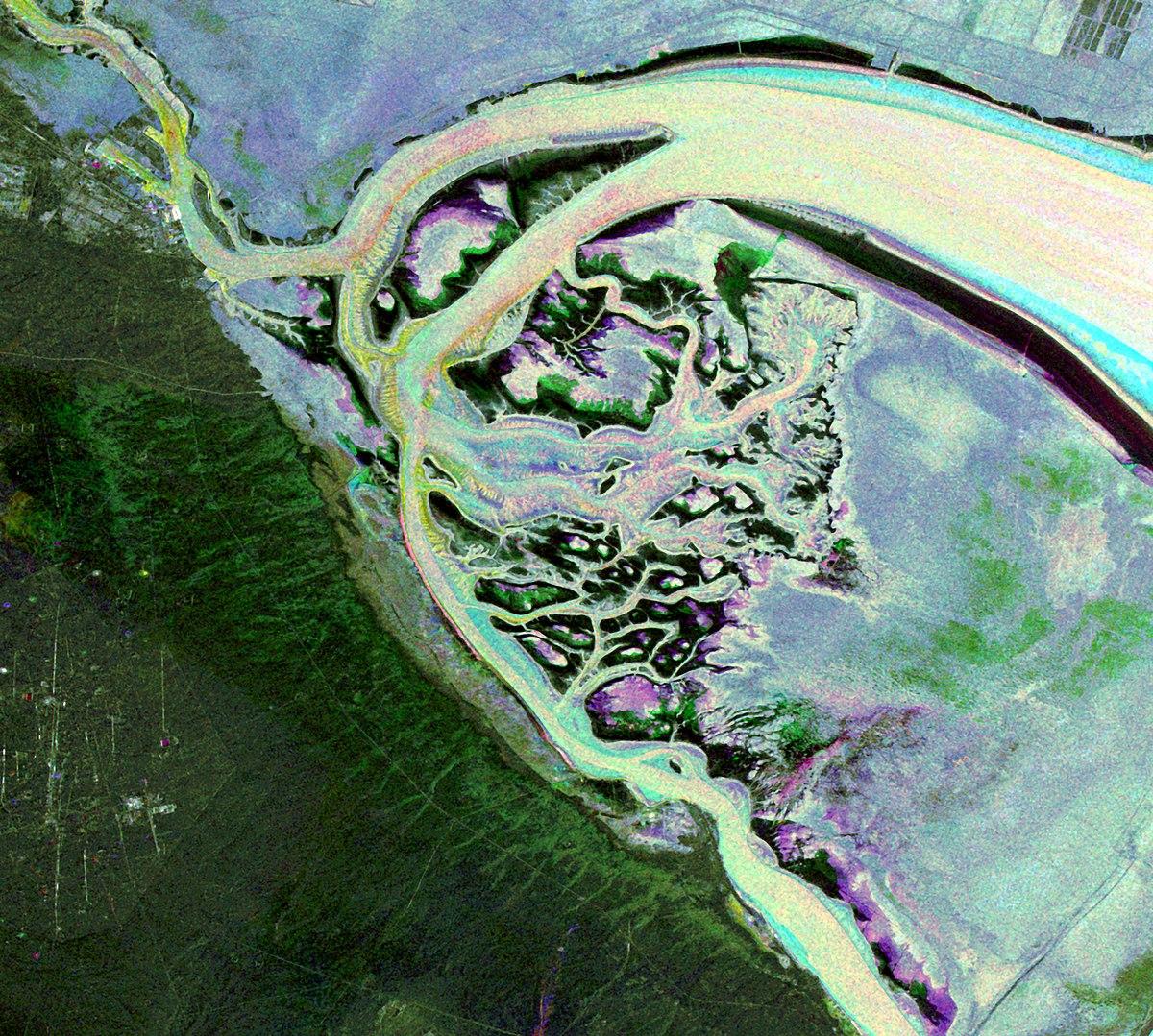 Bubiyan Island - Wikipedia