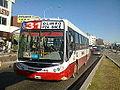 Línea 31*2640 por D2000.jpg