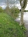 Lakeside, Hartleton Water - geograph.org.uk - 1274565.jpg